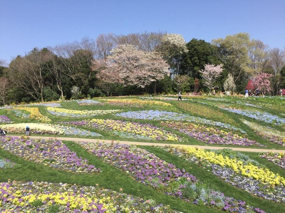春の開園は終了しました。秋の開催をお楽しみに!のアイキャッチ画像$>