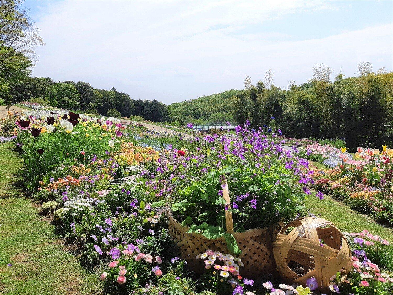 里山ガーデン大花壇2020